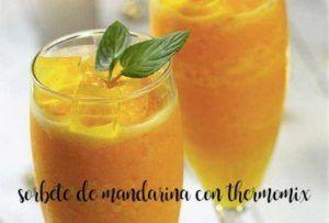 Sorbetto al mandarino con termomix