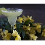 Come preparare un cocktail Margarita sul Bimby
