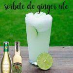 Ginger ale o sorbetto allo zenzero con Bimby