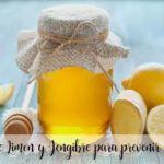 Sciroppo al limone e allo zenzero per prevenire il raffreddore con la Bimby
